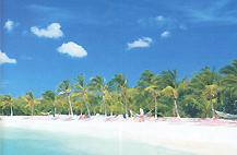 op_vakantie_naar_aruba.jpg